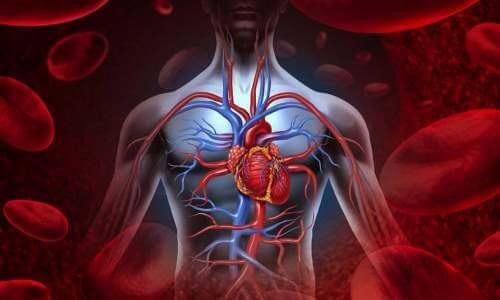 que tener en cuenta al tomar la tensión arterial
