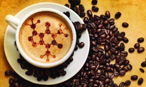 cafeína elimina rescaca