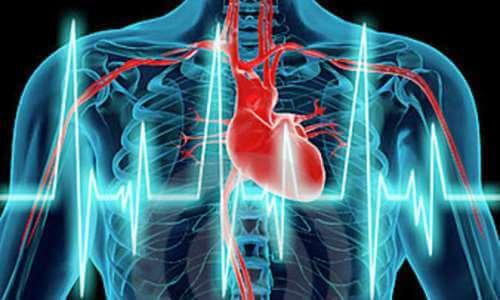 Por qué es importante tener la presión arterial correcta