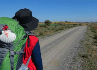 organizar camino de santiago