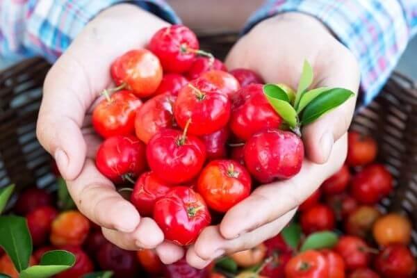 Acerola para la estimulación del colágeno